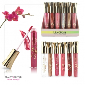 24 Big Lip Gloss Set Enzexi 5 Different Colours & Colourless