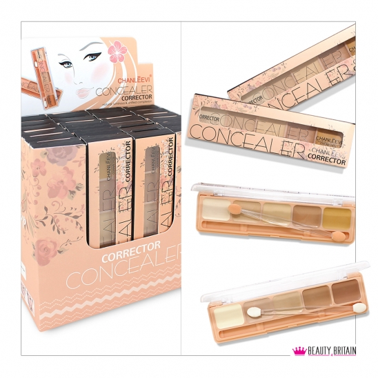 24 Concealers 5 Colours Brush Boxed Luxury