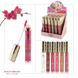 24 Lip Gloss Set Enzexi 6 Colours