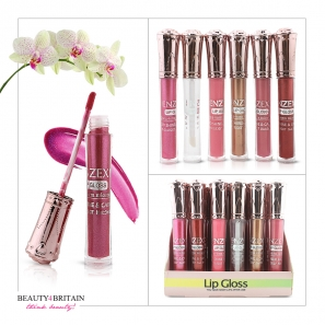 24 Lip Gloss Set 6 Different Colours