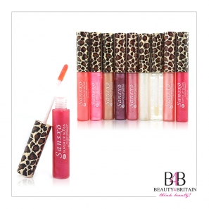 24 Lip Gloss Set Many Different Colours incl. Colourless